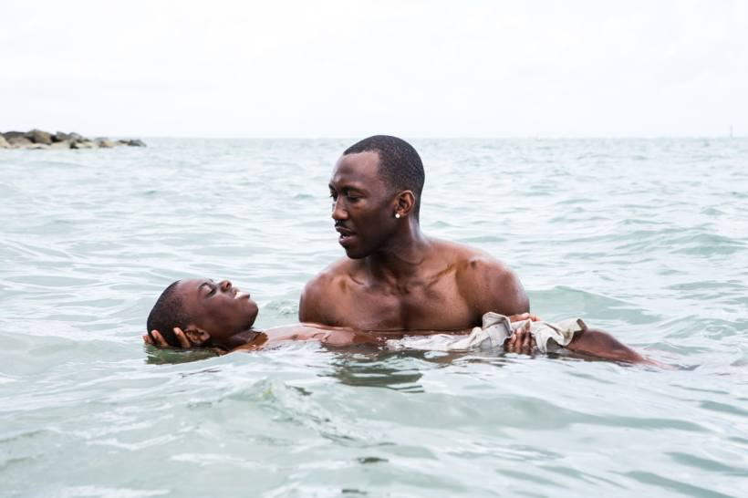 moonlight-barry-jenkins-film-roundtable.jpg